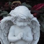 לפני שהילד הופך למלאך - תשמרו עליו